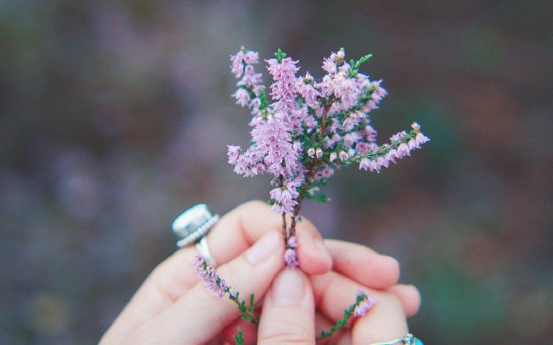 Comment je me suis débarrassée de l'Eczéma avec la naturopathie + photos